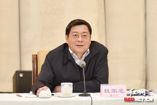 湖南省委副书记、省长杜家毫讲话。