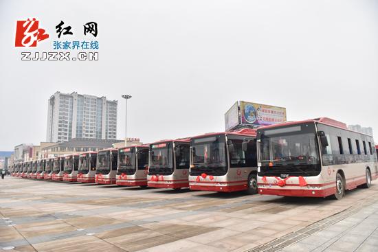 """张家界首批新能源公交汽车正式""""上岗""""-张家界 首批新能源公交车 上岗图片"""