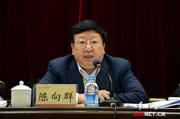 湖南省委常委、常务副省长陈向群出席并讲话。