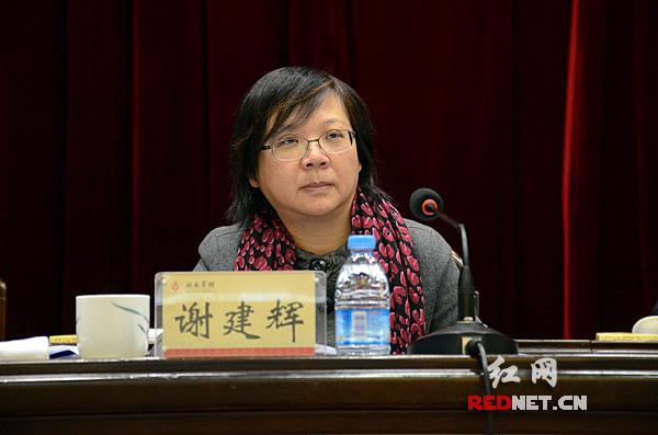 湖南省发改委党组书记、主任谢建辉作工作报告。