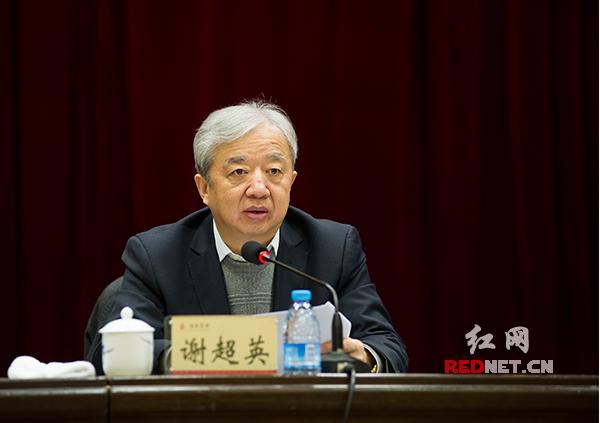 湖南省经信委主任谢超英作工作汇报。