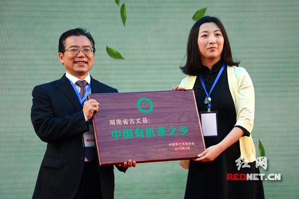 """古丈获湖南首个""""中国有机茶之乡""""认证。"""