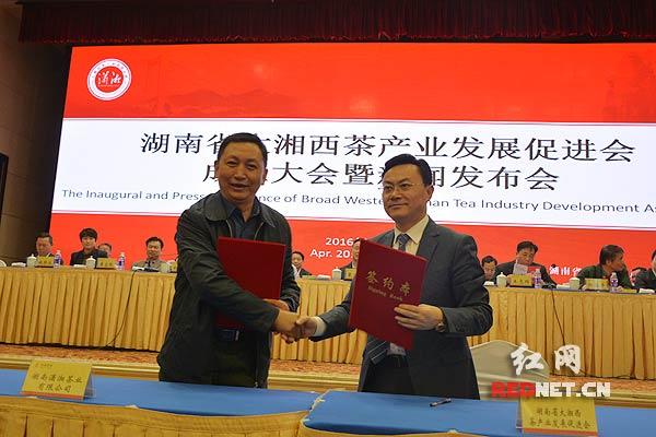 """湖南省大湘西茶业发展促进会签署""""潇湘""""品牌转让协议"""