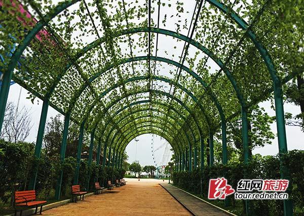 今年景区增设不少人性化的基础设施,让游客在等候时也有惬意的绿荫。