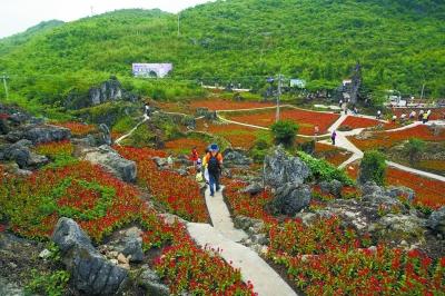 6月8日,游客在石林花海赏花休闲。湖南日报记者 刘建光 摄