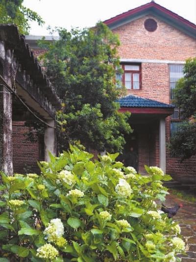 5月的梓园,绣球花开得热闹。 湖南日报记者 刘桂林 摄