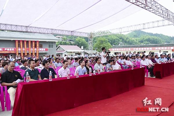 6月18日,五郎溪村首届村博会盛况。资料图。