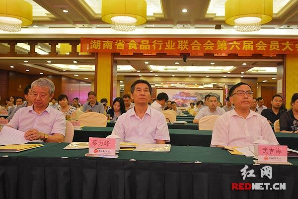 老同志蔡力峰(中)、武吉海(右),湖南省经信委主任谢超英(左)出席会议。