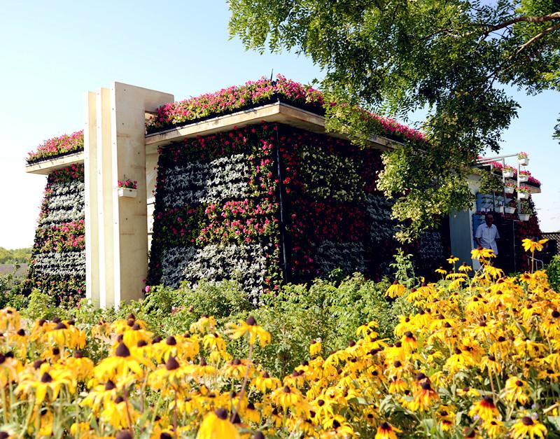 金水湖景区新建花卉立体绿化公厕
