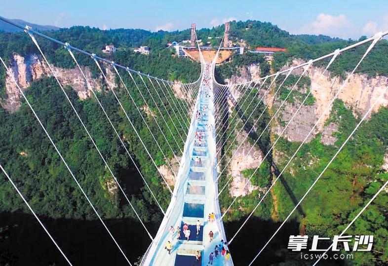 惊险奇绝的张家界大峡谷玻璃桥.资料图片图片