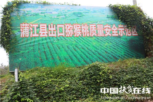 蒲江县出口猕猴桃质量安全示范区
