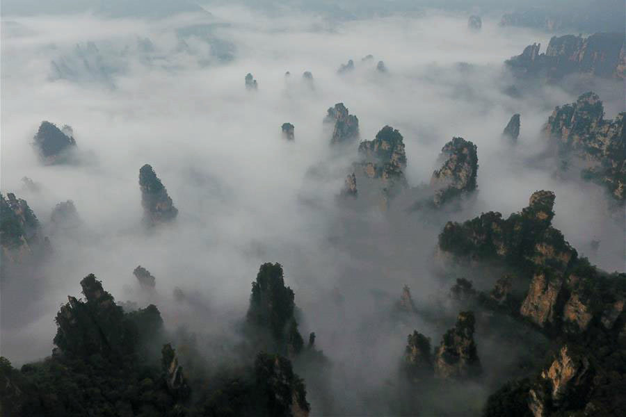 Scenery of sea of clouds in Zhangjiajie