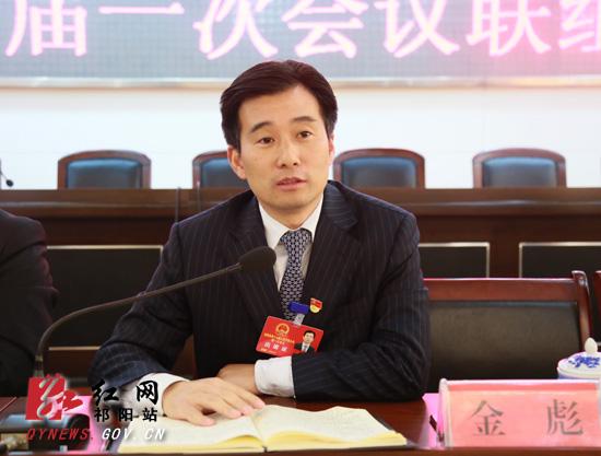 金彪参加祁阳县政协十届一次会议联组讨论