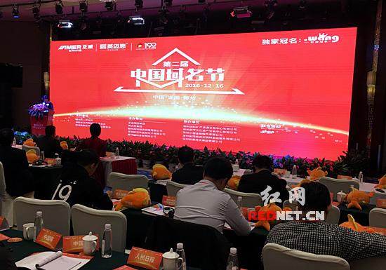 """第二届中国域名节在郴州举行 """"pig.com""""拍出396万天价"""