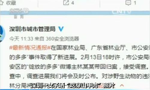 """深圳市城市管理局官方微博,发布了网友""""绽放的多多""""食用穿山甲事件的最新情况通报"""