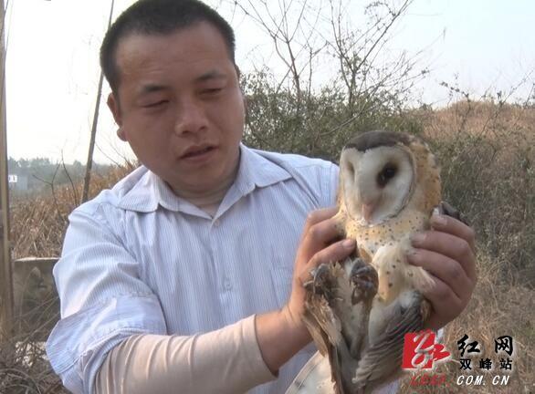 国家重点保护的野生动物