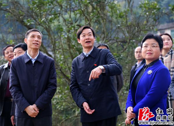 济南市历城区代表团来到保靖县考察调研对口帮