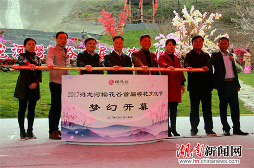 First cherry blossom festival opens in Xunlong River town