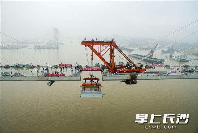最后一块钢箱梁被300吨架梁吊机从湖面驳船上垂直吊起