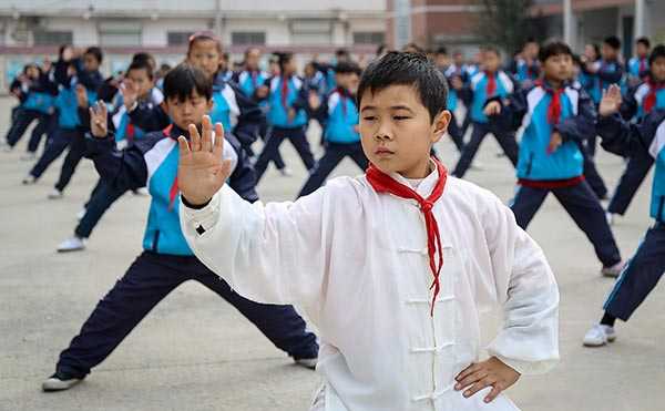 Tai chi pitched for UNESCO list