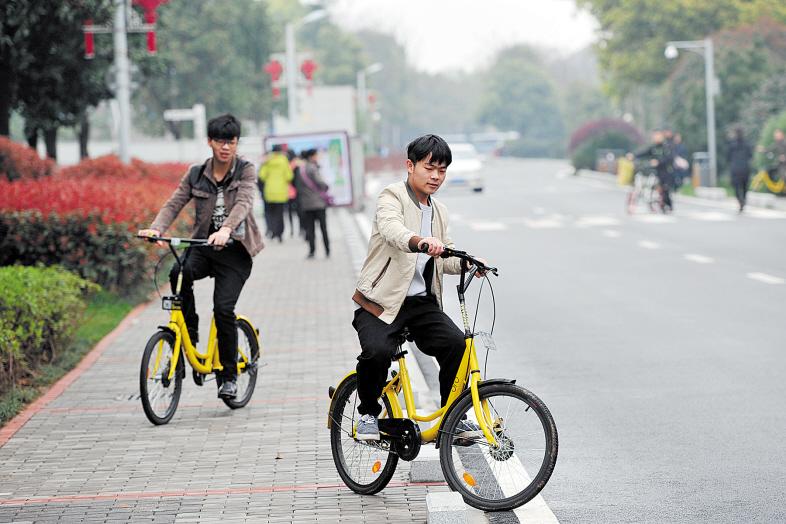 共享单车在带给市民便利的同时,也带来了一系列问题。 长沙晚报记者 王志伟 摄