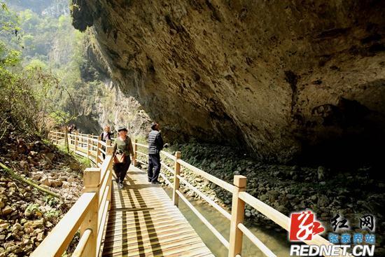 据张家界大峡谷风景区相关负责人介绍,在推出玻璃桥体验项目的同时