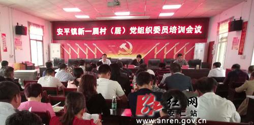 安仁县安平镇召开新一届党(总)支部委员专题培训会图片