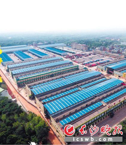 """有着""""超级市场""""之称的大河西农产品物流中心,已有1000余家商户入驻。长沙晚报通讯员 刘汉光 摄"""