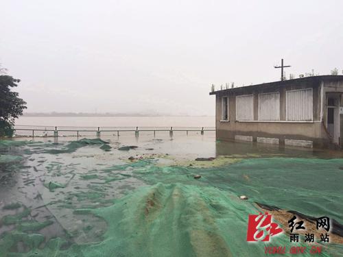 湘潭市雨湖区:窑湾6点超警戒水位 王振华紧急调度