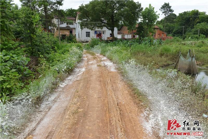 岳阳县新开镇灾后卫生防疫全面跟进