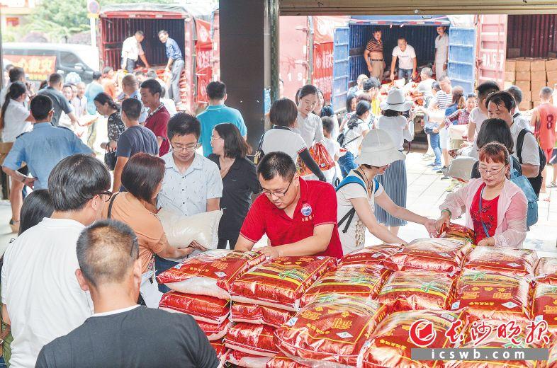 昨日上午,湖南大学EMBA爱心人士来到宁乡,给受灾群众送来近40万元物资。图为大家正在白马桥街道一起帮忙搬运物资。长沙晚报记者 邹麟 摄