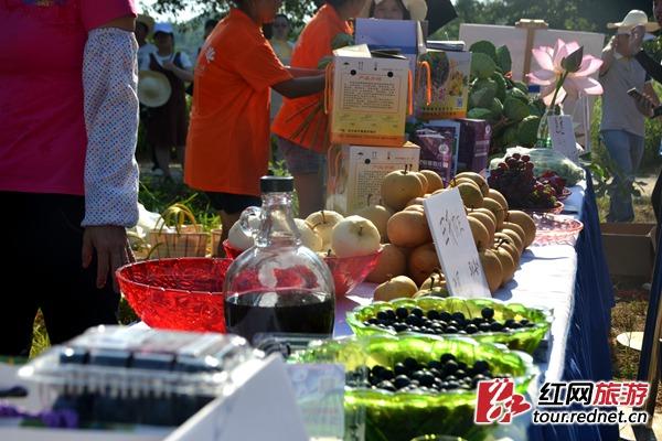长沙县开慧镇开启盛夏鲜果采摘季显卡gtx770384bit图片