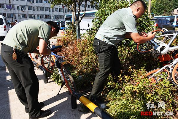 长沙市城管:共享单车违规停放最高可罚运营企