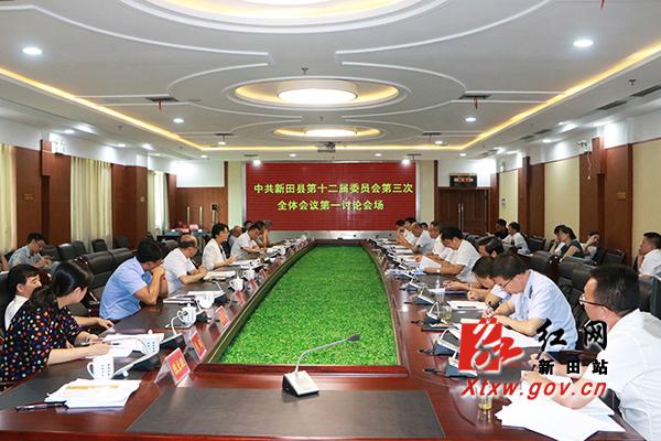 中共新田县委十二届三次全会进行分组讨论