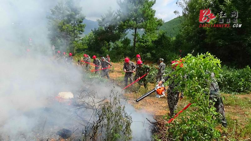 道县森林防火指挥部组织举行秋季森林火灾扑救演练