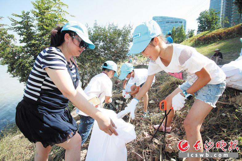文明城育文明人,文明人添彩文明城。图为三角洲社区志愿者在清洁湘江河滩。