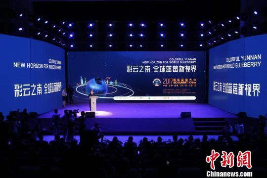 中国蓝莓产业发展迅速成全球蓝莓企业投资热土