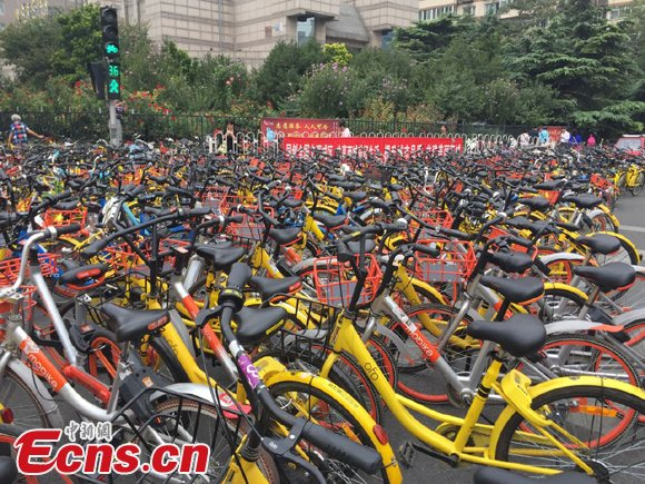 Bike-sharing companies required to buy insurance for users