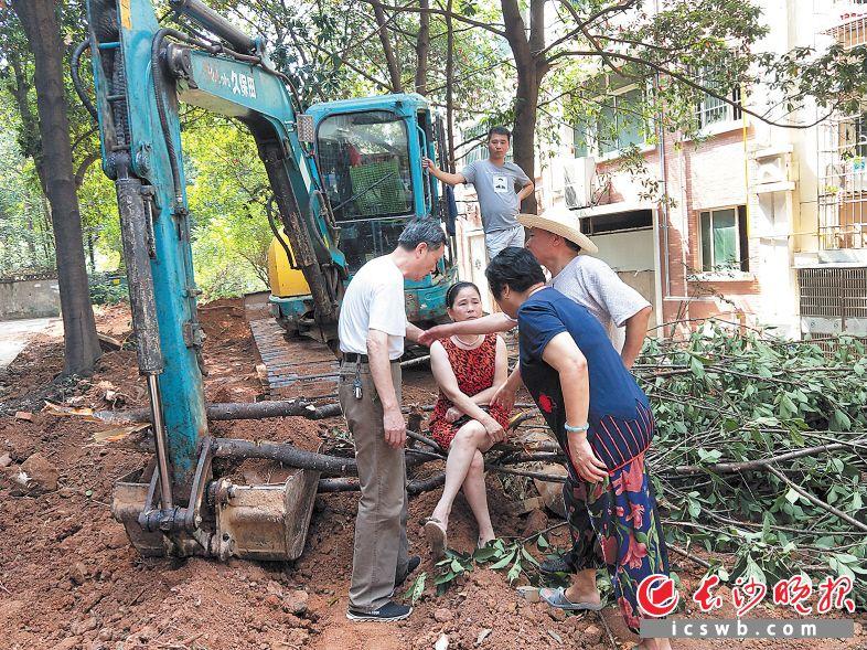 麓山名园小区提质提档监督议事小组在劝说居民。龙王港社区供图