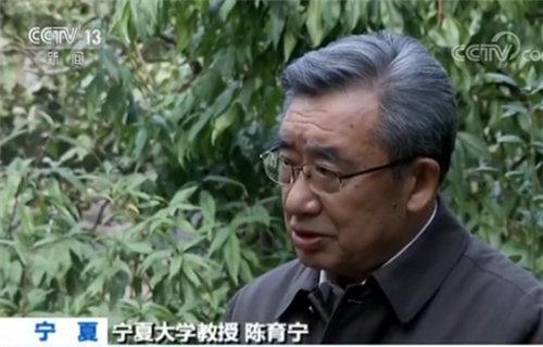 宁夏大学教授陈育宁