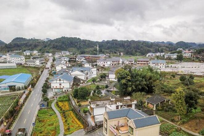 中外学者深入贵州花茂村 感受美丽乡村建设成果