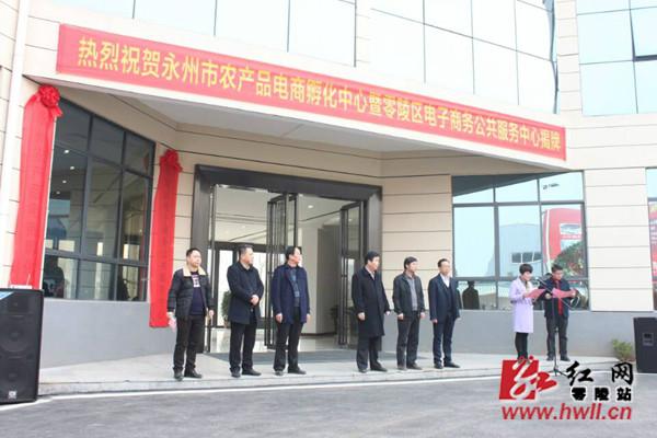 永州市农产品电商孵化中心暨零陵区电子商务公共服务中心成功揭牌