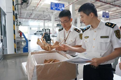 去年上海口岸进口青蟹1万吨帝王蟹成市场明星