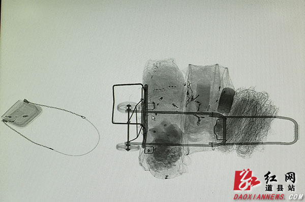 """道县:春运行囊""""素描""""(组图)"""