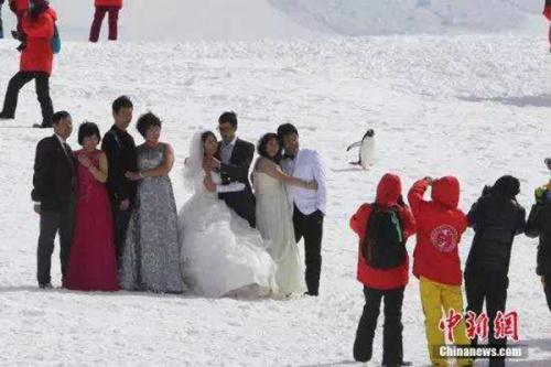 随着出国热的逐步升温,中国人远赴南极大陆,与中外科考队一起探索这片神秘的地方,也不再是许多人的梦想。每年11月份至第二年的2月份,都是去南极探险历程的最好时间。图为中国游客在冰川上拍摄婚纱照。刘延珉/CFP