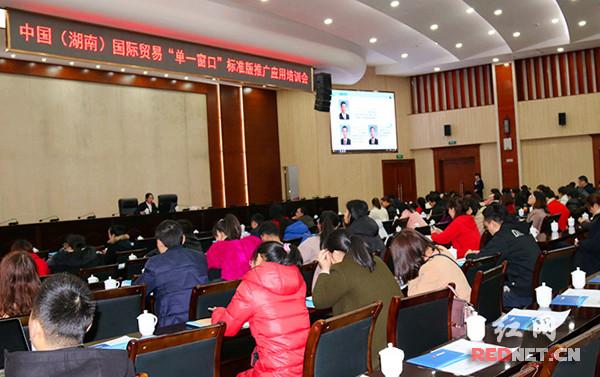 中国(湖南)国际贸易单一窗口标准版推广培训
