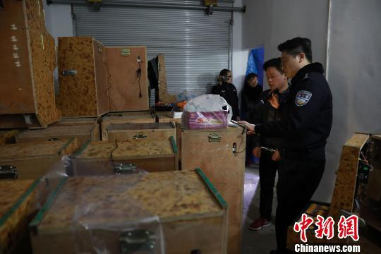 重庆警方打掉20个农村地区赌博团伙