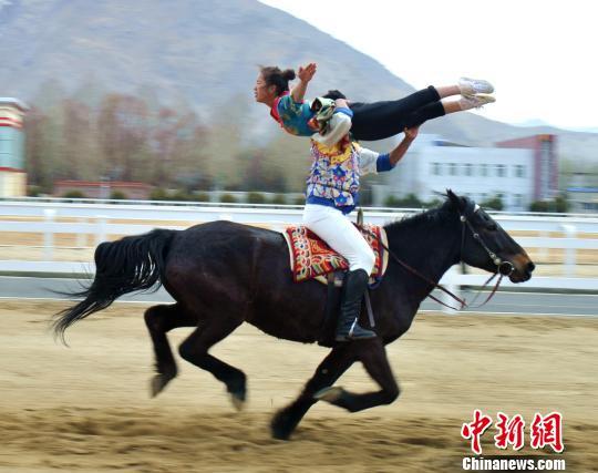 西藏补足马匹短板备战全国少数民族传统体育运动会