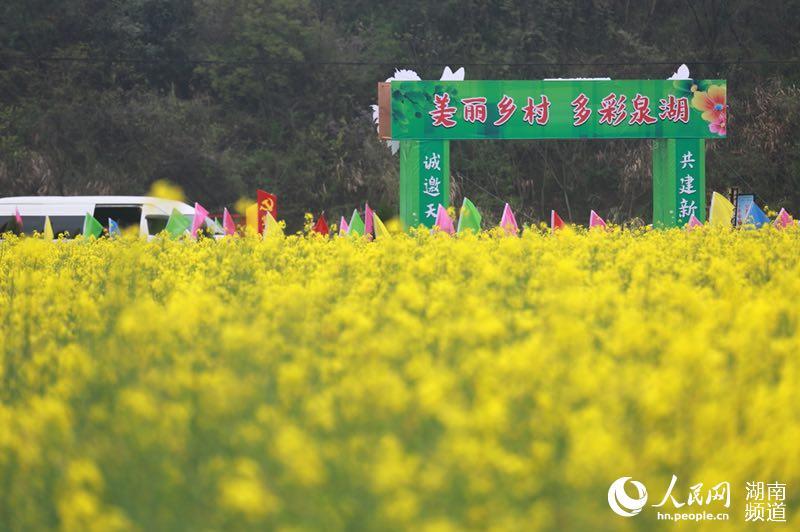 泉湖镇盛开的油菜湖(中共衡南县委宣传部供图)