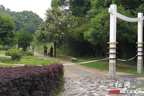 湘潭大学迅速开展校园流浪动物集中清理行动